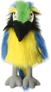 Blue & Gold Macaw (Large)